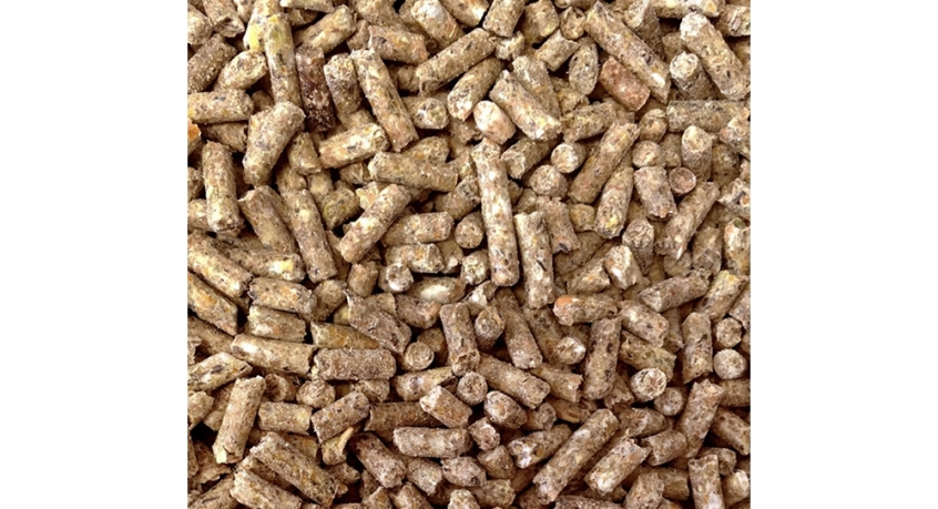 layers pellets 2kg - 20kg