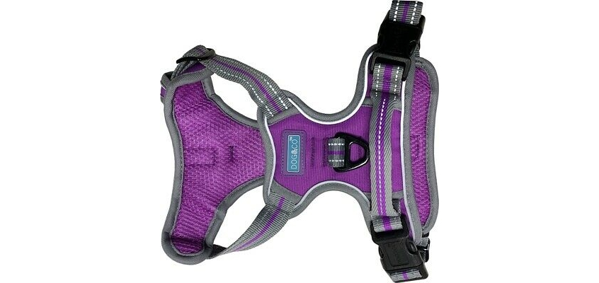 sports harness - double clip soft & strong