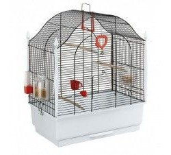 Bird Cages & Aviaries